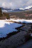 Torrente montano nelle alpi svizzere Fotografia Stock