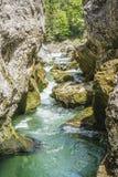 Torrente montano precipitante a cascata Fotografie Stock Libere da Diritti