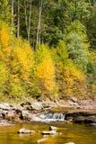 Torrente montano scorrente in autunno Fotografie Stock