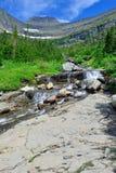 Torrente montano su un'alta traccia alpina in Glacier National Park Fotografie Stock
