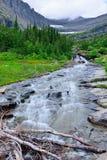 Torrente montano su un'alta traccia alpina in Glacier National Park Immagini Stock Libere da Diritti