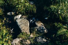 Torrente montano, una molla nelle rocce immagine stock
