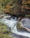 Torrenti montano in autunno tardo Fotografia Stock Libera da Diritti