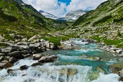 Torrential creek in the mountains Royalty Free Stock Photos