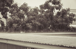 Torrential rain on the roof Stock Photos