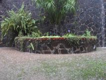 Torrential regenval in de keerkringen stock footage