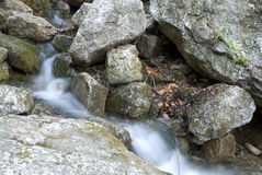 Torrential stream in stone. With green Moss and lichen in may Stock Image