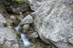 Torrential stream in stone. With green Moss and lichen in may Stock Images