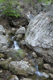 Torrential stream in stone. With green Moss and lichen in may Royalty Free Stock Photography