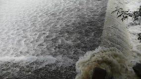 Torrential vattenfallspring, flodurladdning arkivfilmer