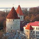 Torres com os telhados vermelhos na fortaleza velha de Tallinn Imagens de Stock