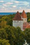 Torres da cidade velha de Tallinn, Estônia Foto de Stock Royalty Free