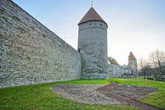 Torres da parede da cidade na cidade velha de Tallinn em Estônia Fotos de Stock