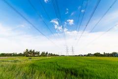 Torres de alta tensão da transmissão no campo verde do arroz Fotografia de Stock