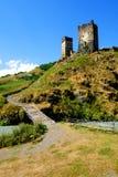 Torres de los cisnes en Mestia Fotos de archivo libres de regalías