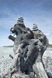 Torres de los guijarros de la playa en el driftwood Imagenes de archivo