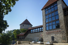 Torres de Tallinn velho Foto de Stock Royalty Free