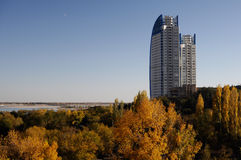 Torres del edificio del rascacielos sobre árboles Imagen de archivo