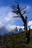 Torres del Paine εθνικό πάρκο, Παταγωνία, Χιλή Στοκ Φωτογραφίες