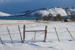 Torres Del Paine το χειμώνα Στοκ φωτογραφία με δικαίωμα ελεύθερης χρήσης