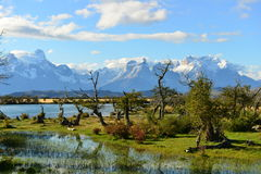 Torres del Paine Immagine Stock