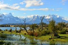 Torres del Paine imagen de archivo