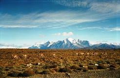 Torres Del Paine, Ameryka Południowa/ Obrazy Royalty Free