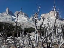 Torres Del Paine - Chile Foto de archivo libre de regalías