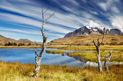 Torres del Paine, Chile Stock Photos