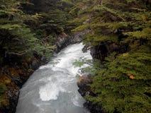 Torres Del Paine - Chili Stock Foto's