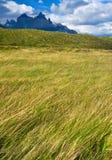 Torres Del Paine Landscape Stock Images