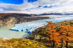 Torres del Paine National Park, Chili stock afbeeldingen