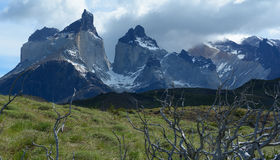Torres del Paine National Park 10 Royalty Free Stock Photo