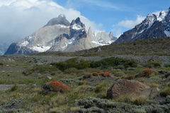 Torres del Paine National Park 5 Royalty Free Stock Photography