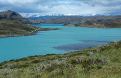 Torres del Paine National Park 19 Stock Images