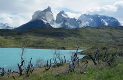 Torres del Paine National Park 6 Stock Image