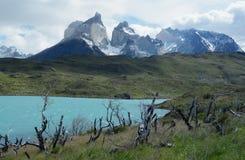 Torres del Paine National Park 6 Stock Image