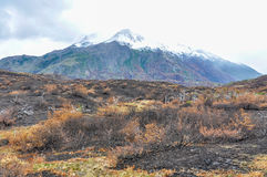 Torres del Paine National Park, Patagonia, Chile. After the fire in the Torres del Paine National Park, Patagonia, Chile stock photography