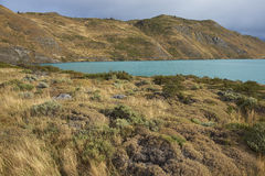 Torres del Paine National Park, Patagonia, Chile Royalty Free Stock Photography