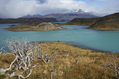 Torres del Paine National Park, Patagonia, Chile. Snow capped peak of Cerro Ferrier (1,600 m) viewed across the blue waters of Lago Pehoe in Torres del Paine Royalty Free Stock Photography