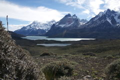 Torres del Paine NP Arkivbilder