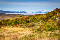Torres del Paine, Patagonia, Chile Stock Images
