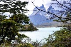 Torres del Paine - Patagonia - Chile nationalpark Arkivbilder