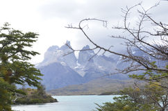 Torres del Paine - Patagonia - Chile nationalpark Royaltyfri Fotografi