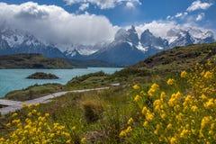 Torres del Paine - Patagonia - il Cile Fotografie Stock Libere da Diritti