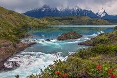 Torres del Paine - Patagonia - o Chile fotos de stock