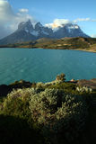 Torres del Paine range, Patagonia, Chile Royalty Free Stock Photography