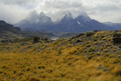 Torres Del Paine, sydlig Patagonia, Chile Royaltyfria Foton