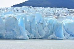 Torres del Paine Trail Grey Glacier Royalty-vrije Stock Afbeelding