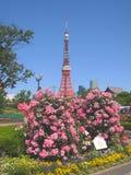 Torres do Tóquio em Japão Imagem de Stock Royalty Free